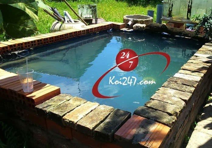 Hồ Koi lót bạt setup A-Z