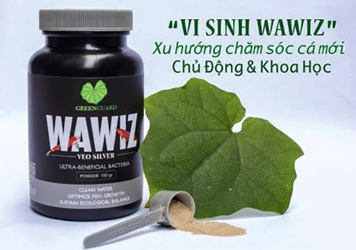 Vi Sinh Wawiz